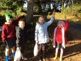 P3 and P4 on Autumn Nature Walk